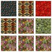 Fabric Collection 53852
